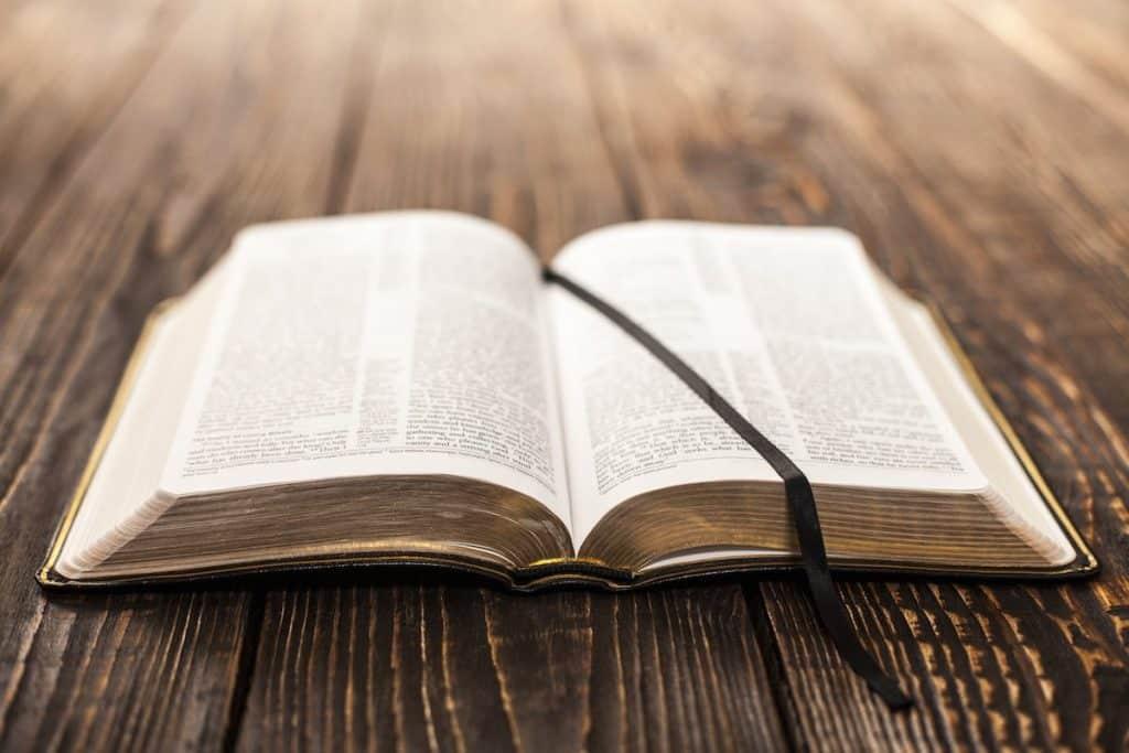 5b3fc8c879709735111f1a3f_bible